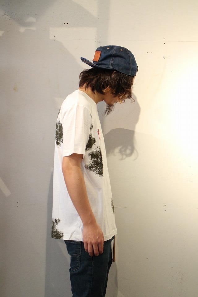 IMG_6686.jpg